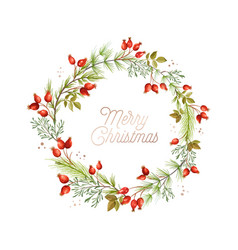 christmas wreath green pine branches red rose vector image
