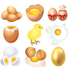 Eggs set vector