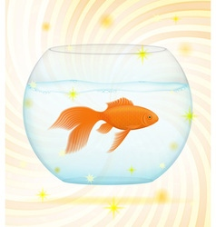 gold fish 02 vector image