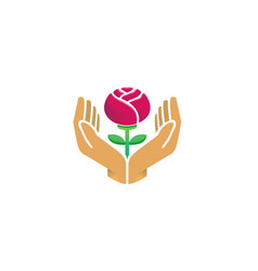 hands holding red rose flower care logo vector image