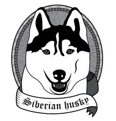 Siberian husky portrait isolated dog vector