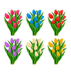 Spring blooming tulip flower set vector