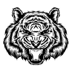 tiger single head and open his mouth vector image
