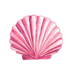 Watercolor Seashell vector