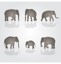set of simple elephants eps10 vector image