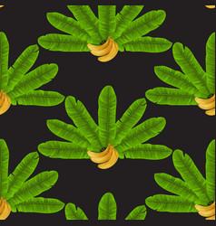 banana fan seamless pattern vector image
