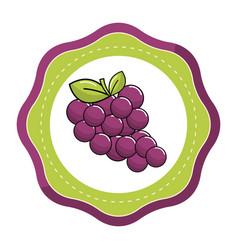 emblem sticker grapes fruit icon image vector image vector image