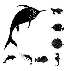 a variety of marine animals black icons in set vector image