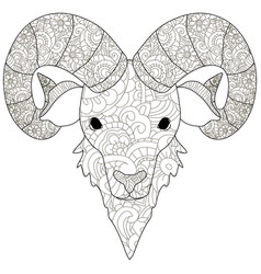 Adult antistress coloring head of a ram pattern vector