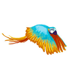 bright flying parrot cartoon animal on white vector image