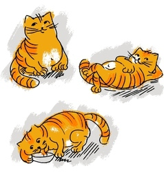 collection cute red cat set vector image