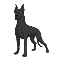 Color image of a black great dane vector