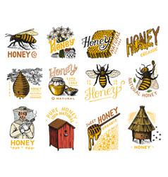 honey and bees set beekeeper man and honeycombs vector image