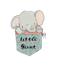little pocket elephant vector image