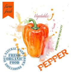 Pepper watercolor banner vector