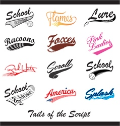 Tails of the Script vector