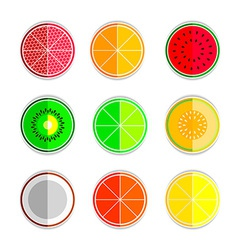 orange mandarin lemon watermelon cantaloupe kiwi vector image