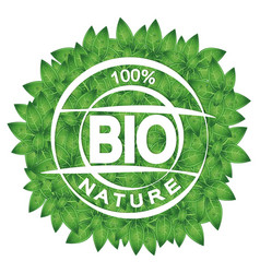 symbol of bio and green leaves vector image