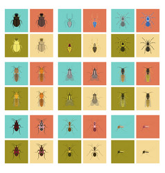 Assembly flat insect wasp soldier bug ant vector