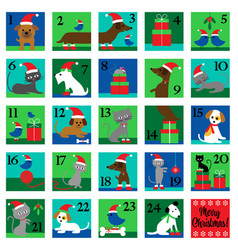 Christmas advent calendar with cute cats dogs vector