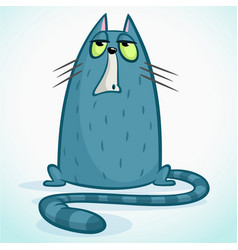 Cute little cartoon cat with a grumpy expression vector
