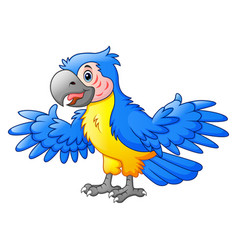 cute parrot cartoon vector image