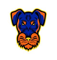 jagdterrier front mascot vector image