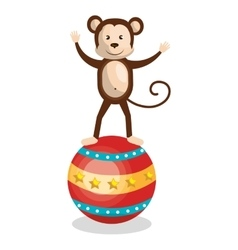 Monkey circus animal show isolated icon vector