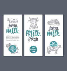 template poster or label with cow and clover farm vector image vector image