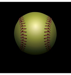 Softball on Black vector image vector image