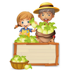 farmer with lettuce on wooden board vector image