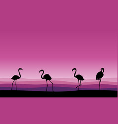 Flamingo family scene silhouettes collection vector