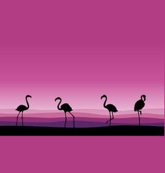 Flamingo family scene silhouettes collection vector