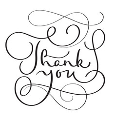 hand drawn thank you text on white vector image