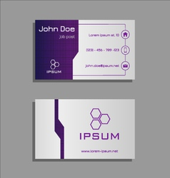Professional business card - purple and light grey vector image
