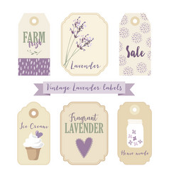 set vintage labels and tags with lavender vector image