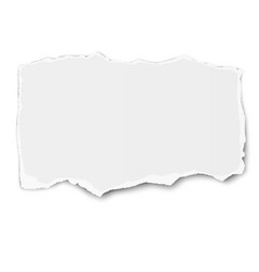 White paper tear with shadow placed on vector