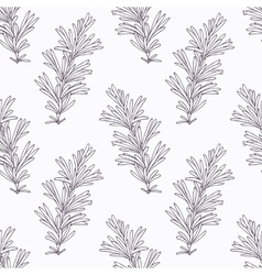 Hand drawn rosemary branch outline seamless vector image vector image