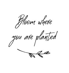 Bloom where you are planted inspirational and vector
