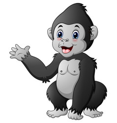 Cute baby gorilla vector