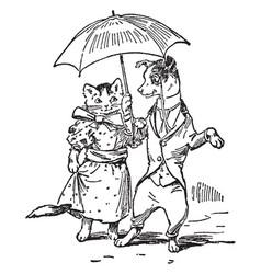 Dog cat dressed with umbrella vintage vector