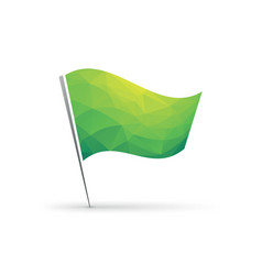 green flag with geometric background vector image