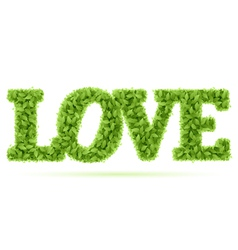 love word in green leaves vector image