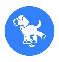 Pissing dog icon in black style for web vector