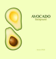 Realistic avocado background vector