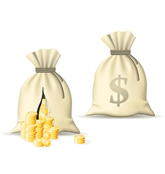sack with money vector image