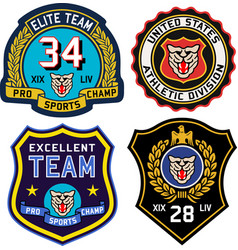 set retro vintage college badges and labels vector image