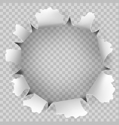 Torn hole and ripped of paper on a transparent vector