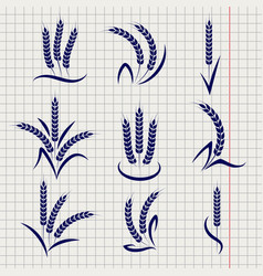 wheat branches on notebook page vector image