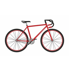 Red sport bicycle on a white background vector image